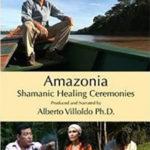 Amazonia Book Cover Image